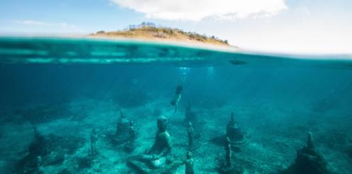 Já ouviu falar de do Turismo Subaquático?!